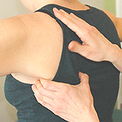 west-end-physio-vancouver-Visceral-Manipulation-therapy